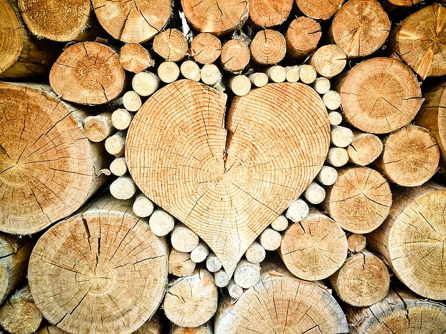 srdce z polínek